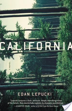 California by Edan Lepucki Audiobook Review