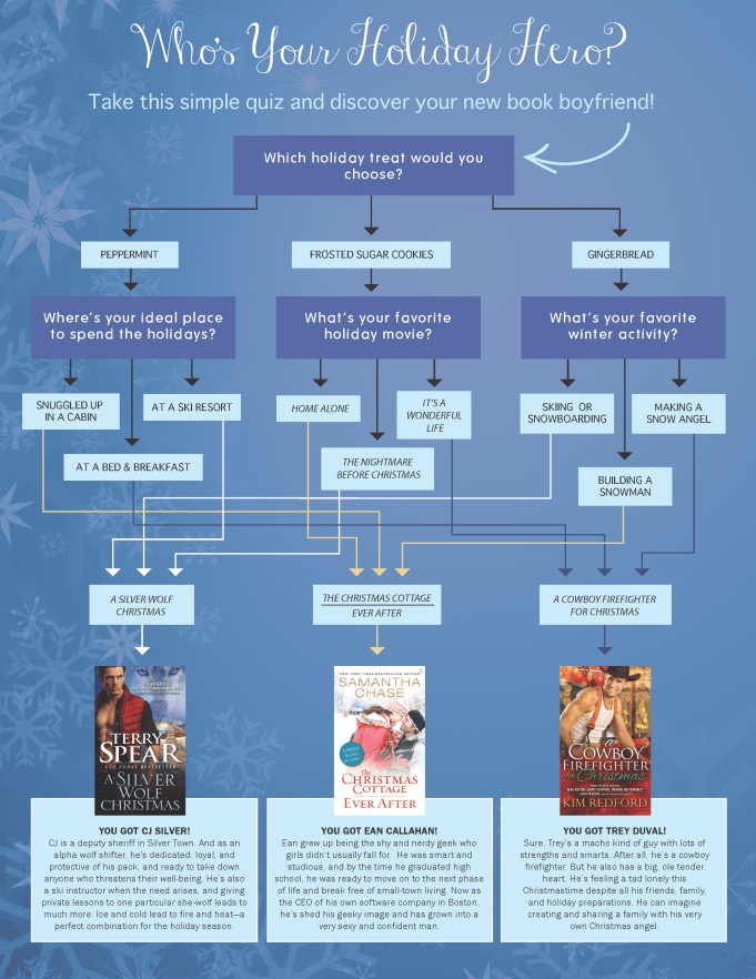 holiday hero flow chart