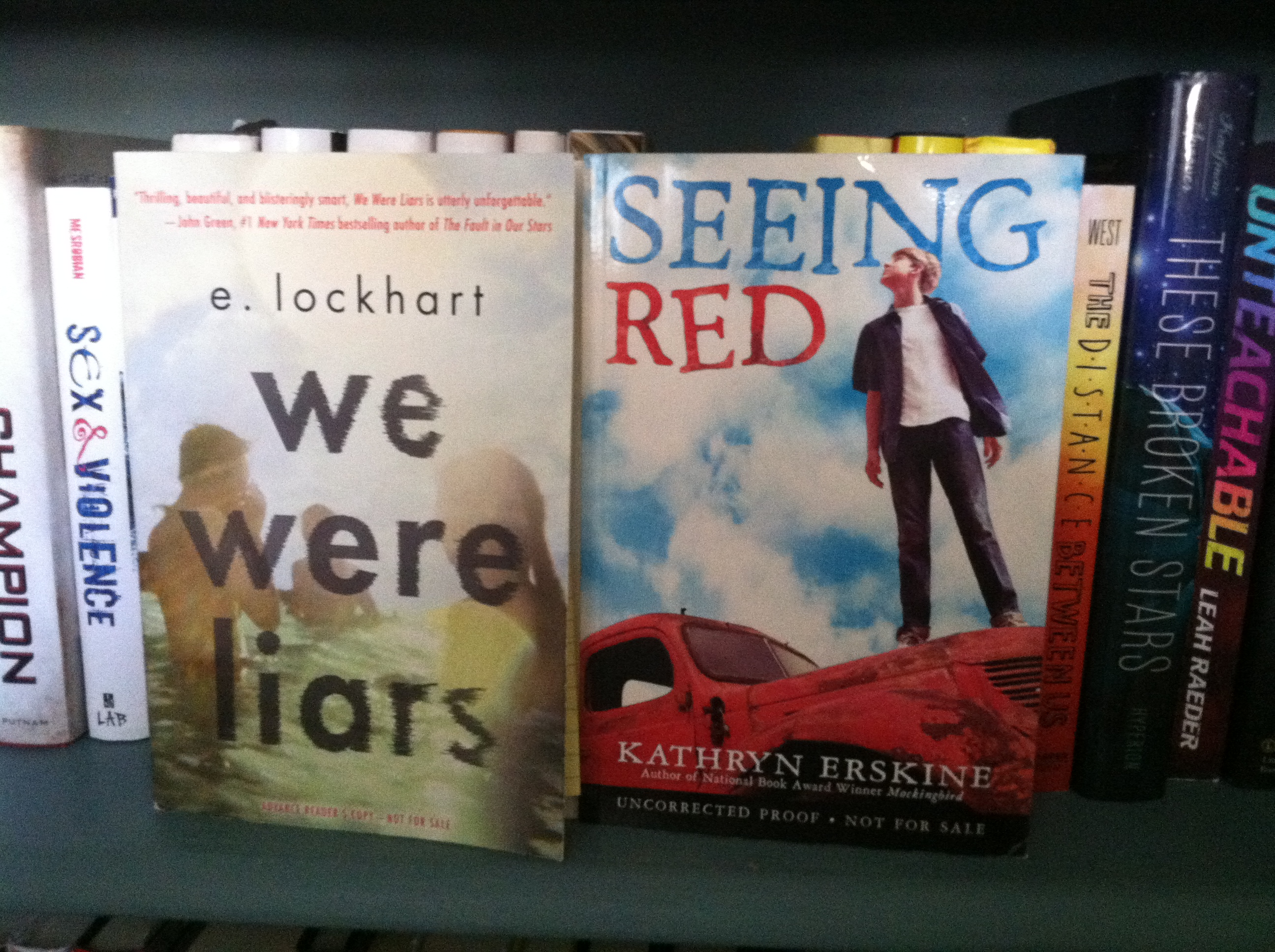 we were liars and seeing red