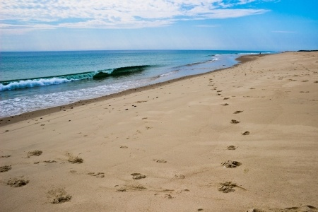 cape cod beach footprints
